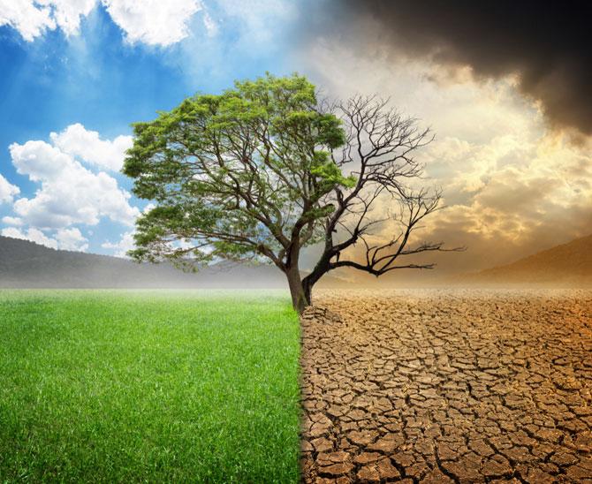 Klimaschutz über alles? Manche halten die Fokussierung des Actionplan for Sustainable Finance der EU auf das Thema Klima für zu einseitig. (Bild: Shutterstock)