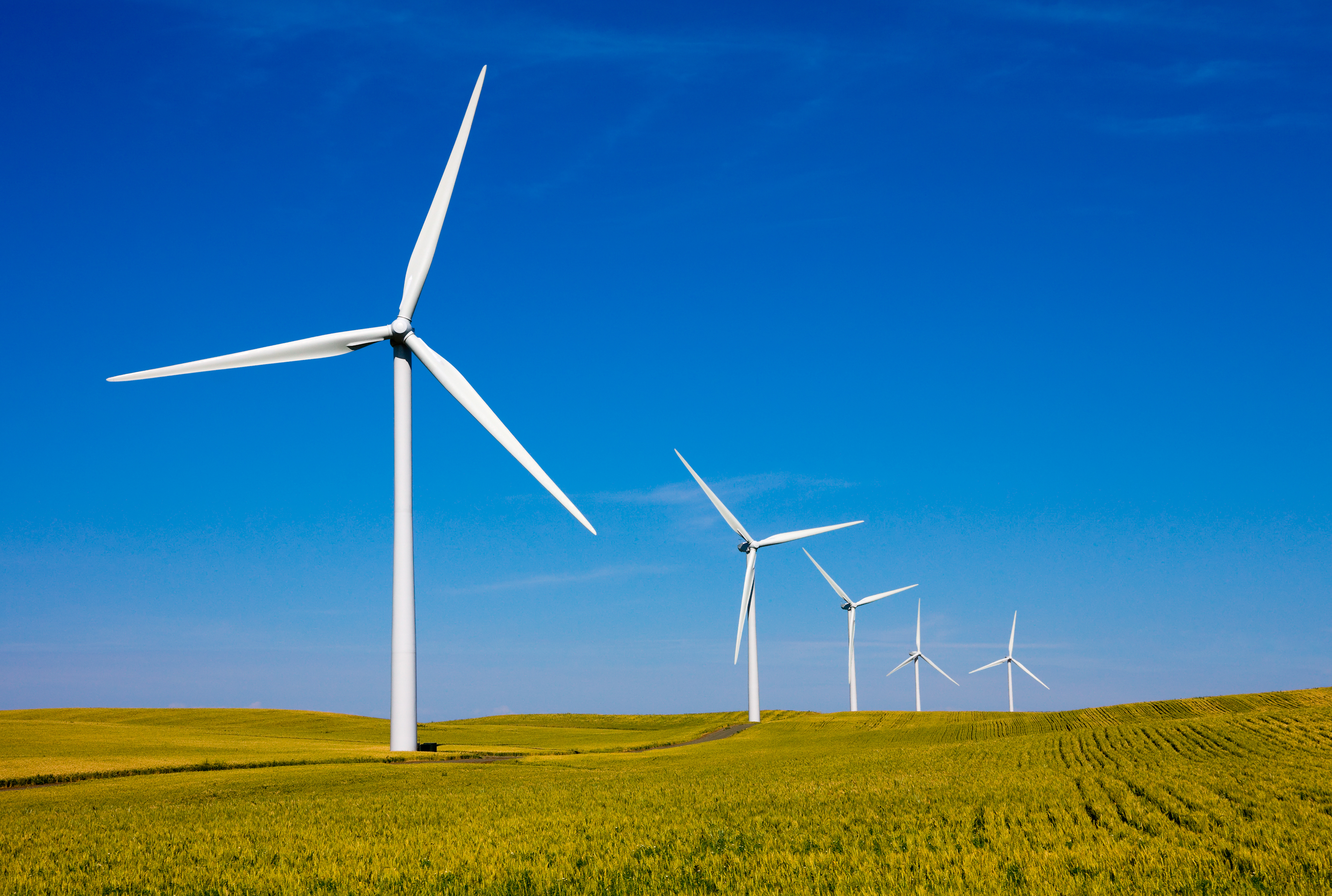 Munich Re will Renewables aufstocken